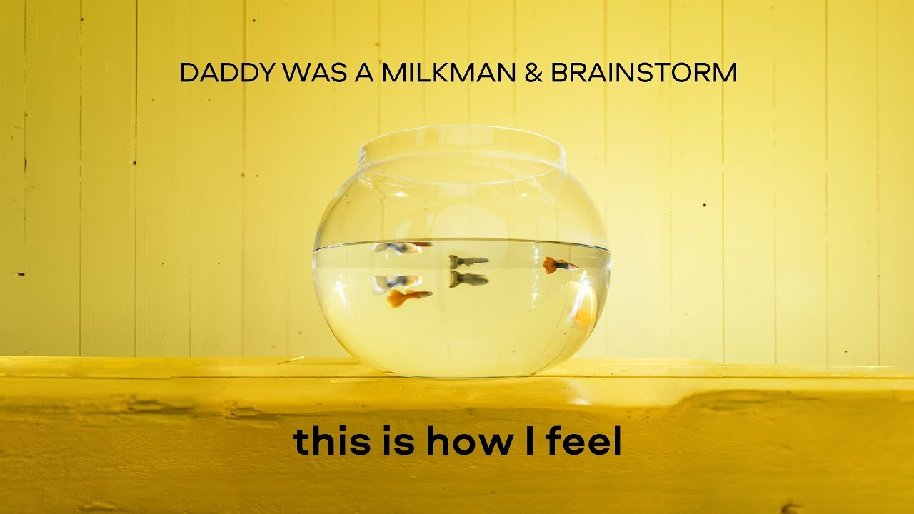 Daddy Was A Milkman feat. Brainstorm - This Is How I Feel